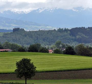 Heiß wurde der Beschluss über eine neue Discgolf-Anlage in Peißenberg dirkutiert.